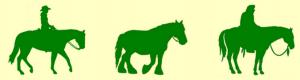 picto-cheval-3x